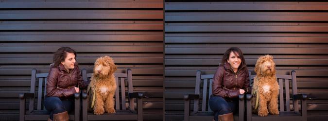 Modern Album sample with dog photography