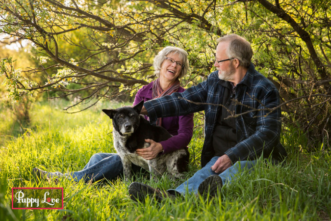Lethbridge river bottom senior dog photos with family