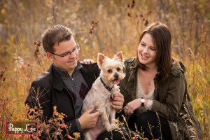 Popson Park senior dog photo session